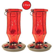 2-Pack Perky-Pet 8139-2 Ruby Starburst Vintage-Style Glass Hummingbird Nectar Fe