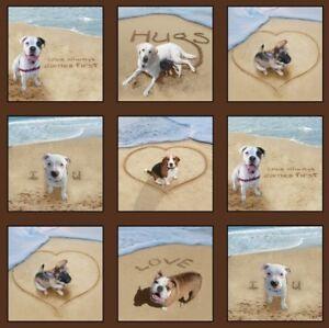 "23"" Fabric Panel - Elizabeth's Studio Sand Scribbles Beach Dog Blocks Brown"