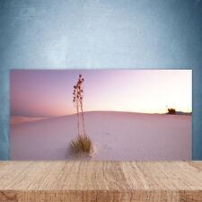 Crédence de cuisine en verre Panneau Paroi 100x50 Paysage Désert