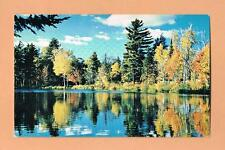 Dryden Wabigoon Drugs Northern Ontario Canada Unused Vintage Postcard