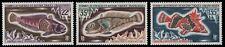 TAAF 1971 - Mi-Nr. 68-70 ** - MNH - Fische / Fish