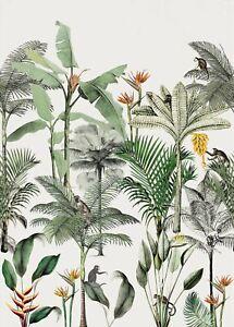 Rasch Papier Peint 539172 Club Botanique Singe Jungle Blanc Coloré Mural Polaire