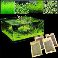Aquarium Water Grass Seeds Live Plant Home Fish Tank Decoration Seed Aquatic 10g