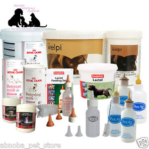 Complete Feeding Kit Choice of Milk   Colostrum & Bottles Puppy Kitten Whelping