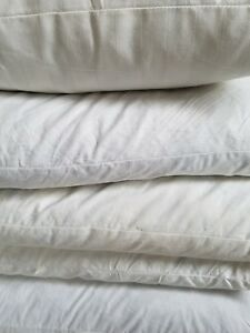 Down/Feather Pillow Inserts Variety of Sizes Secondhand