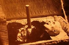 NOSFERATU clipping B&W photo 1979 vampire Klaus Kinski stake through heart