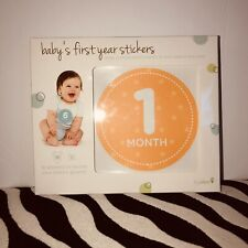 Baby's First Year Stickers Monthly Milestone Photo Belly Stickers