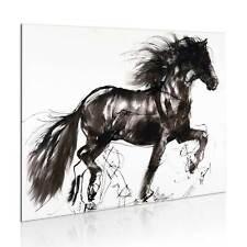 100% Handgemalt – Gemälde / Bilder Leinwand 1 Teilig Pferd 77x55 8235_MK