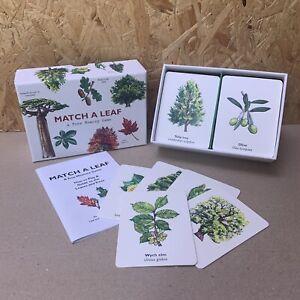 Match a Leaf Memory Card Game - Royal Botanic Gardens Kew - Holly Exley