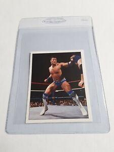 1997 Panini WWF Superstars Rocky Maivia Rookie Wrestling Sticker **PACK FRESH**