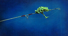 Will Bullas THE CONSULTANT, Fishing, Frog, Business, Professional, art print