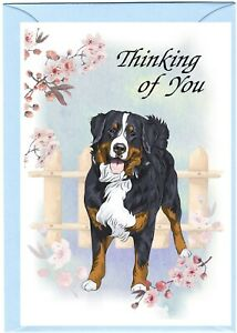 "Bernese Mountain Dog (4"" x 6"") Thinking of You Card (blank inside) by Starprint"