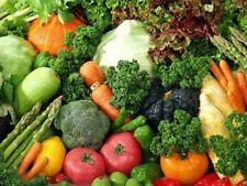 "Vegetable Seeds ""Summer Pack"" 20 Packs + Free Extra Seeds"