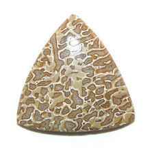 Dinosaur Bone Cabochon 24.5x24.5mm with 4.5mm dome (11781)
