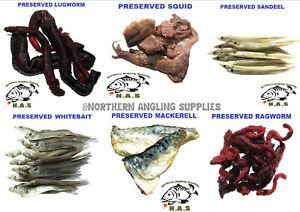 FISHING PRESERVED BAIT RAG WORM /PRAWNS/MACKEREL/SQUID/ NEW SANE EELS / SEA FISH