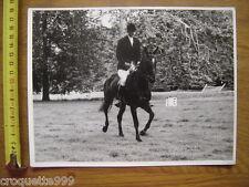 Photo TROT ASSIS cavalier sur un cheval de course CONCOURS EQUITATION Delcourt