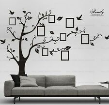 Extra Large Black Family Photo Frame Tree Birds Wall Stickers Home Decor