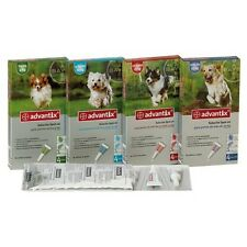 Advantix 100 Spot-on Bayer perros (4-10 kg) antiparasitario - 3 pipetas