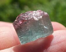 Tourmaline Crystal Point Terminated Blue w/Pink Cap Bi-Colored 2.2g/11ct 12mm