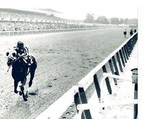 GREATEST RACE HORSE EVER? SECRETARIAT 8X10 PHOTO TRIPLE CROWN
