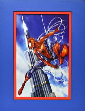 AMAZING SPIDER-MAN PRINT PROFESSIONALLY MATTED Jamie Tyndall