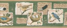 Wallpaper Border Yellow Blue and Black Birds on Tree Branches Nests Feathers
