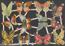 BUTTERFLIES INSECTS MOTH SPRING CUT COLLAGE GERMAN PAPER  CUT 2013 ART EMBOSSED