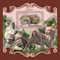 Mozambique - 2018 Cat Breeds - Stamp Souvenir Sheet - MOZ18102b