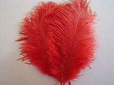 "10 RED OSTRICH FEATHERS 13-15""L GRADE *B*"