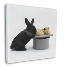 """Rabbit and Guinea Pigs in Top Hat 12""""x12"""" Wall Art Canvas Decor, Pict, AR-10-C12"""