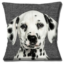 """Dalmation Puppy Dog Cushion Cover 16""""x16"""" 40cm Photo Charcoal Texture Background"""