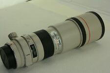 Canon EF 300mm f/4 L USM, Staub/dust