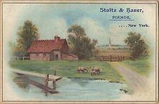 Victorian Trade Card-Stultz & Bauer Pianos-Rochester, NY-Pastoral Scene-Church