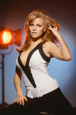 Raquel Welch studio lights pin up 11x17 Mini Poster