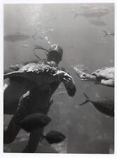 PHOTO ANCIENNE DE PRESSE Plongée sous marine Plongeur Bouteille Poisson 1970