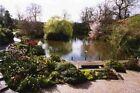 Postcard of the Dingle, centrepiece of the Quarry Park, Shrewsbury