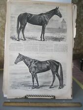 Vintage HORSE Print,GOLDSMITH MAID,Harpers,1869#2