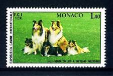 MONACO - 1981 - Esposizione canina internazionale di Montecarlo