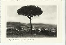79066 BAGNI DI CASCIANA VECCHIA CARTOLINA