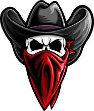 """#731 (1) 4"""" Cowboy Outlaw Skull motorcycle country truck decal sticker Vinyl"""