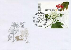 Slovenia Flowers Stamps 2021 FDC Guelder Rose Nature Plants Flora 1v M/S
