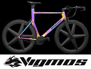 Pinion Time Triathlon Bike Aero Zeitfahrrad Velo Titan titanium bike ironman Rot
