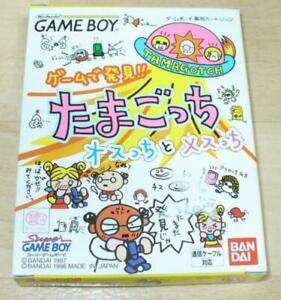 Nintendo Game Boy software Discovered in the game! Tamagotchi male and female