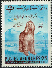 Afghanistan Afghan Dog in Mountains stamp 1962 MH