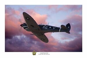 """WWII WW2 RAAF Bobby Gibbes Spitfire Aviation Art Photo Print - 8"""" X 12"""""""