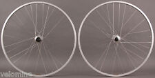 Sun Rhyno Lite Silver 29er Mountain Bike Wheelset 6 bolt Disc Hub DT Competition