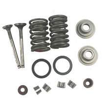 GY6 50cc Intake and Exhaust Valves Kit Moped Scooter 139QMB Engine