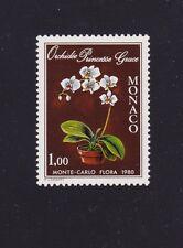 Monaco 1190 Princess Grace Orchid