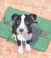 Dogs Border Collie Limited Edition Print of Original Painting by Sue Barratt