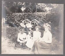 Vintage 1897-05 5 Fox Terrier Puppies Dogs 4 Ladies Girls Fashion Of Era Photo